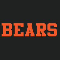 SR Bears - PosiCharge ® RacerMesh ™ Visor Design